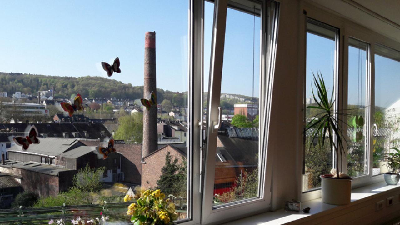 Blick aus dem Fenster von ffs Integra.
